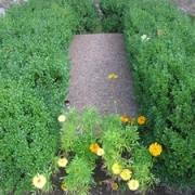 Kotrynos Odinaitės-Daukantienės kapas